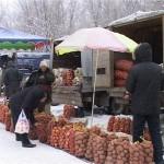 25-26 желтоқсан күндері Шымкентте ауыл шаруашылығы жәрмеңкесі өтеді