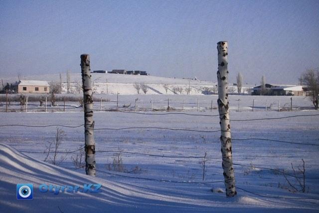 АН-72 ұшағы құлаған жердегі шашылып жатқан бөлшектер ғана мен мұндалап тұр. Оңтүстік Қазақстан облысы, 26 желтоқсан 2012 жыл