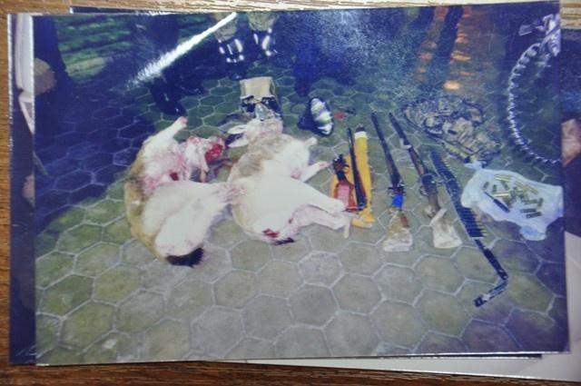 Қарақұйрықтарды аулаған броконьерлер қылмысы Арыс аудандық ішкі ікстер бөлімінде қаралуда