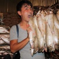 Мұнда күніне 10 мың тонна балық әкелінеді
