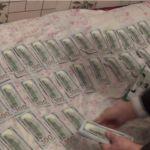 Асханада түстенген әйелдің 8000 доллары бар сөмкесін ұрлап кетті