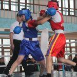Ринг төрінде — боксшы қыздар