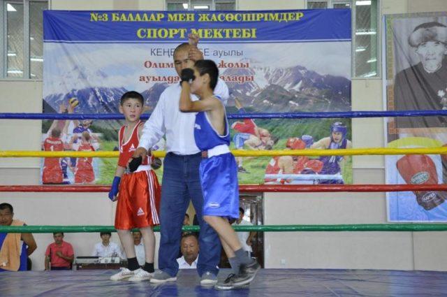 Бәйдібек ауданында бокстан халықаралық турнир өтті