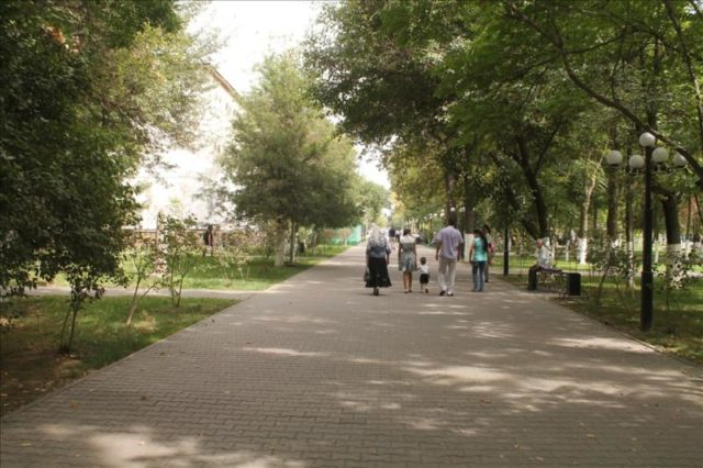 Shymkent (82)