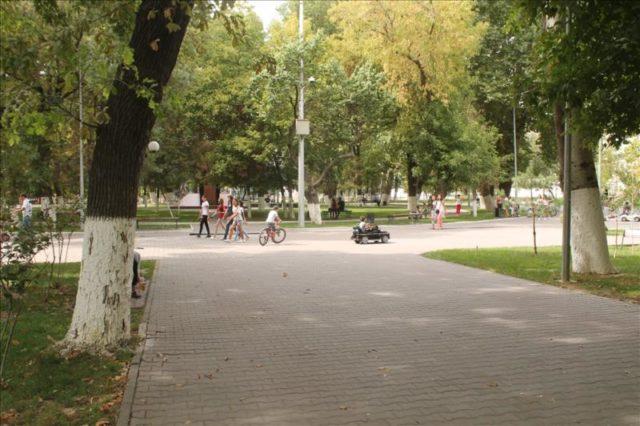 Shymkent (83)
