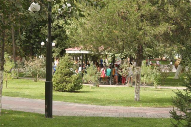 Shymkent (85)
