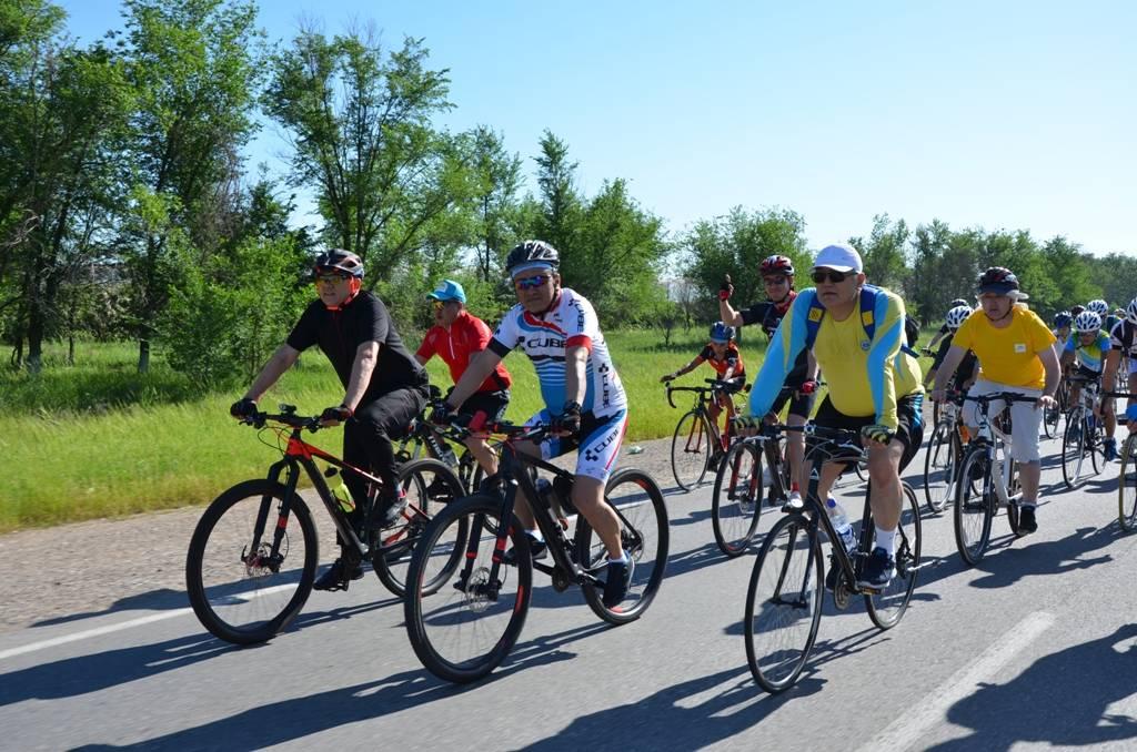 ОҚО-да Елбасы мақаласы аясында «Билерге тағзым» велошеруі өтті