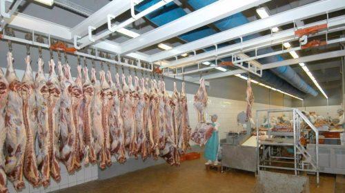 Оңтүстік шаруалары 8 айда 3 мың тоннаға жуық ет экспорттады