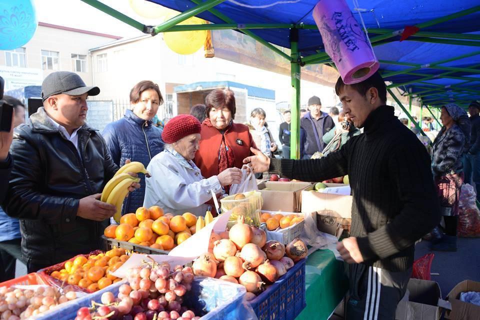 Түлкібаста биыл 31 өндірістік кооператив құрылды